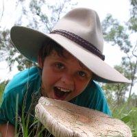 Вначале я ходил за грибами, а потом они за мной. :: Лара Гамильтон