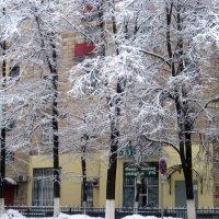 Снежная зима в городе :: Елена Семигина