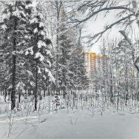 У леса на опушке... :: Любовь Чунарёва