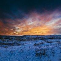 зимний закат :: Алина Гриб
