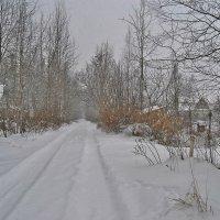 Снегопад :: Натали Пам