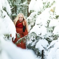 Зимняя сказка :: Екатерина Гриб