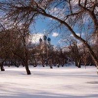 Зимний пейзаж с церковью :: Alexander Petrukhin
