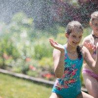 Лето! :: Anna Shevtsova