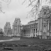 весна в Царицыно :: Светлана Ларионова