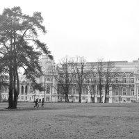 Дворцовая панорама :: Светлана Ларионова