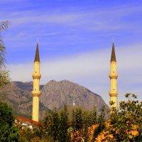 Мечеть . Турция . :: Мила Бовкун
