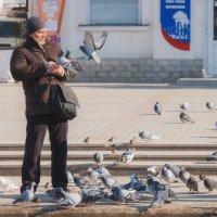 Что есть покушать? :: Mihail Mihaylov
