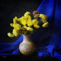 Цветы :: Галина Galyazlatotsvet