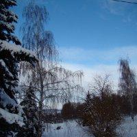 Морозным днем на набережной :: марина ковшова