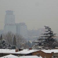 1 февраля :: Наталья Джикидзе (Берёзина)