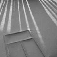 Окно в снег :: Сергей Шаврин
