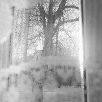Зима :: ELENA RAUPOVA
