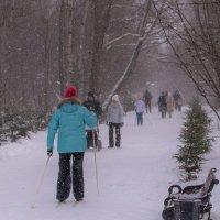 Снегопад - не помеха для прогулки :: Владимир Безбородов