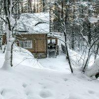 домик в лесу :: Юрий Борзов