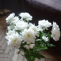 Зимняя снежность.. :: Татьяна Юрасова