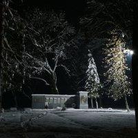 В ночной тишине... :: Петр Заровнев