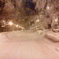 Зимняя ночь :: ВиктОр ИванОвич
