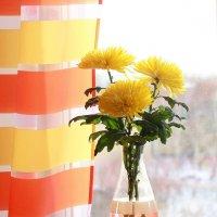 Дарите  женщинам  цветы! :: Наталья Казанцева