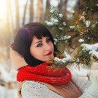 Зимняя сказка :: Julia Novik