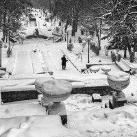 Одинокий ... парк :: Владимир КРИВЕНКО