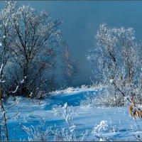 Морозный денёк :: Александр Лихачёв