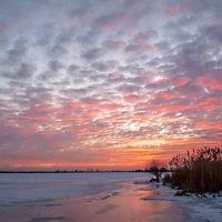 Розовый закат. :: Марина Соколова