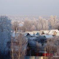 Морозное утро :: Виктор Стельник