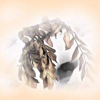 Зимний гербарий.... :: Tatiana Markova