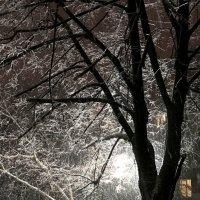 Зима в городе :: Сергей Рубан