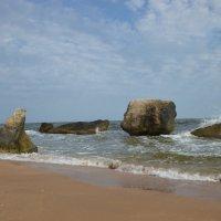 Азовское побережье Крыма :: Тамара
