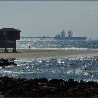 Зиний пляж. :: Leonid Korenfeld