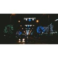 Ночные огни :: Анита Фокс