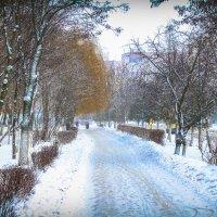 зима :: Екатерина Румянцева