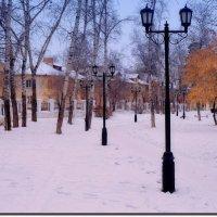 Фонари в зимнем сквере :: Евгений Карский