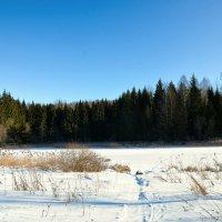 Зима 2017 :: Милешкин Владимир Алексеевич