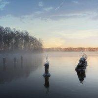 Морозное утро :: Борис Гольдберг