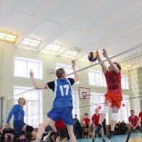 Волейбол :: Колибри М