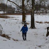 По снежку.. :: zoja
