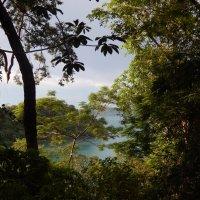 Вид из горных джунглей на Сиамский залив. :: Лариса (Phinikia) Двойникова