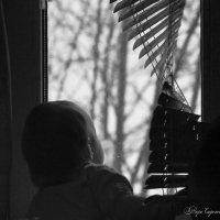 А за окном... :: Вера Сафонова