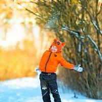 Теплое зимнее утро :: Мария Ефремкина