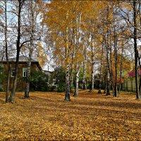 Осенняя пора :: Leonid Rutov