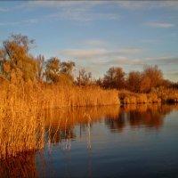 Осень на Соленом озере :: Татьяна Пальчикова