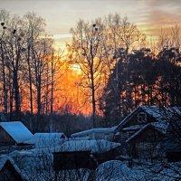 Закат,зима,роща :: Валерий Талашов