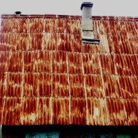 Дом без хозяина :: Tanja Gerster