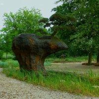 Парк в районе Вильгельмсбург (серия).Чёрная сосна-бонсай (4м) на камне-медведе :: Nina Yudicheva