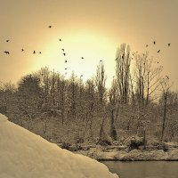 Зимний вечер :: Сергей Форос