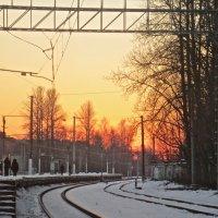 пути-дороги на закате :: Елена