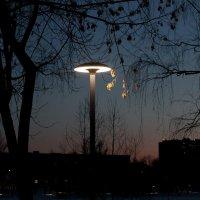 ночь в городе :: elena manas